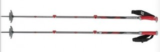 Black Diamond Expedition ski pole